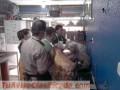 CURSOS PELUQUERIA CANINA