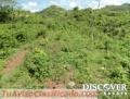 Finca de 600 manzanas en Venta en Palacaguina, Madriz ID11082