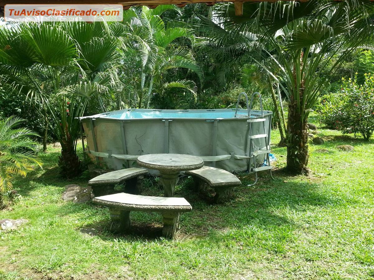 Se alquila casa en residencial lankester 2 inmuebles y for Casa con piscina quebrada alvarado