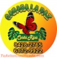 Se Alquilan Cabañas Costa Rica Cabo Blanco - Puntarenas 8408-5345