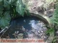 vendo-terreno-de-8-hectareas-en-atyra-paraguay-1.jpg