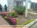 vivero-y-proyectos-de-jardineria-y-ornatos-3.jpg