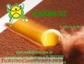 Academia de Tenis en Pilar, Academia Tec-