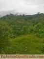 ganga-27-hectareas-2-200-000-cada-una-4.jpg