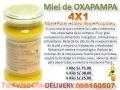 MIEL DE OXAPAMPA DELIVERY 995160507