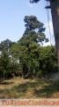 en-guatemala-2000-varas-37-av-zona-7-muy-cerca-de-calzada-san-juan-ideal-mini-bodegas-3.jpg
