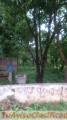 terreno-en-ahuachapan-1.jpg