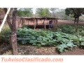 Venta de Finca en Tisma Masaya de 5 dormitorios y 4 baños