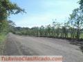TURRUCARES, Distrito La Garita, Los horcones…..Alajuela Finca:  74.700 m2