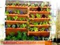 clases-de-hortalizas-2.jpg