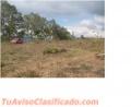 Vendo terreno de 5 Manzanas en Chimaltenango