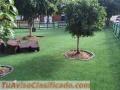 Grama Soysia y San Agustin, Piedra pome