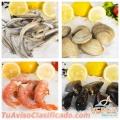 pescados-y-mariscos-congelados-vepez-distribuidor-mayorista-merluza-calamar-langostino-1.jpg