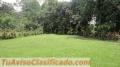 Quinta Anita Grande. Guápiles.  Un Lugar de Paz, naturaleza y tranquilidad. Financio