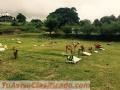 camposanto-bosquez-de-paz-alajuelita-4.jpg