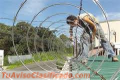 INSTALACION DE ALAMBRE NAVAJA 85357298