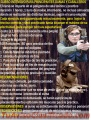 Curso de tiro defensivo presicion tactico quetzaltenango