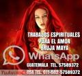 VIDENCIA Y TAROT MAYA 01150257589372