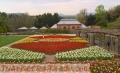 mantenimiento-profesional-de-jardines-1.jpg