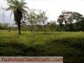 CHIRIQUI, BUGABITA, BUGABA, TERRENO 5 HECTS. + 3262.22 Mts/2 TITULADAS $200.000.00