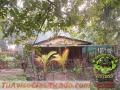 cabana-rustica-la-paz-en-costa-rica-tel-8408-5345-3.jpg