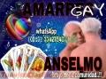 AMARRES DEL MISMO SEXO, BRUJO ANSELMO (00502)33427540