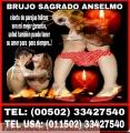 Brujo sagrado anselmo  00502-33427540