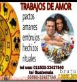 TRABAJOS DE AMOR...AMARRES Y RECONCILIACIONES   (00502)  33427540