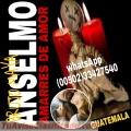 AMARRES DE AMOR CON MAGIA VUDU (00502)33427540