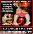 BRUJO ANSELMO, TRABAJOS DE AMOR INMEDIATOS  (011502)  33427540